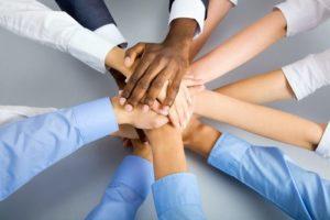 equipa-marketing-digital-rodini-netto